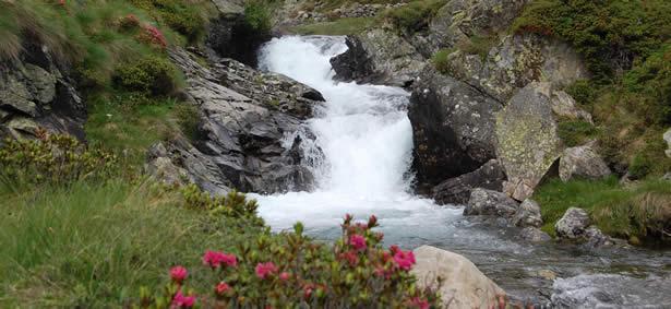 Foto Escursioni e ascensioni partendo dal Rifugio Malghera